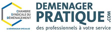 Nouveau logo CSD dem pratique 2018 Copie 450
